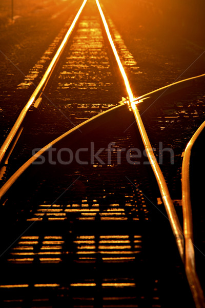 Morning sun lighting up railroad tracks Stock photo © pictureguy