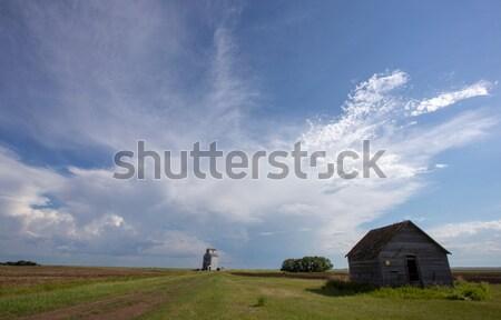 Burzowe chmury saskatchewan niebo drzewo chmury trawy Zdjęcia stock © pictureguy