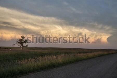 Nubes de tormenta pradera cielo Canadá siniestro peligro Foto stock © pictureguy