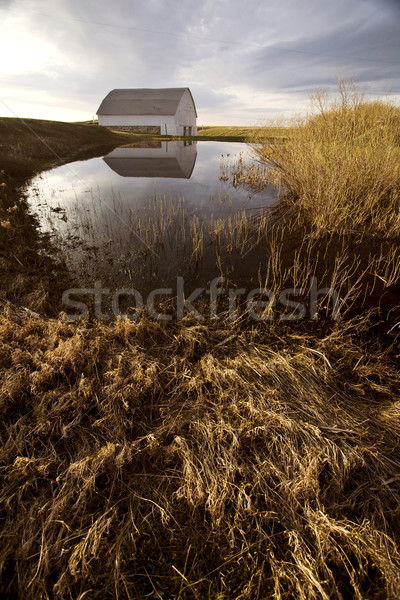 Old Barn and Dugout marsh Canada Stock photo © pictureguy