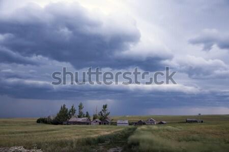 Viharfelhők Saskatchewan felhők tehén utazás szín Stock fotó © pictureguy