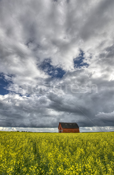 Canada rouge grange saskatchewan nuages Photo stock © pictureguy