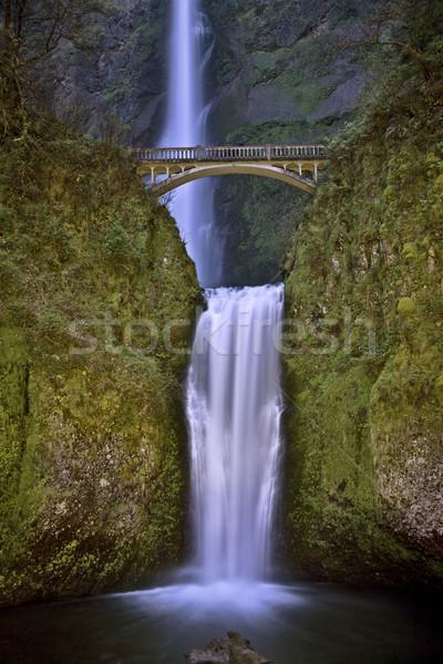 Oregon nehir su yeşil güzel Stok fotoğraf © pictureguy