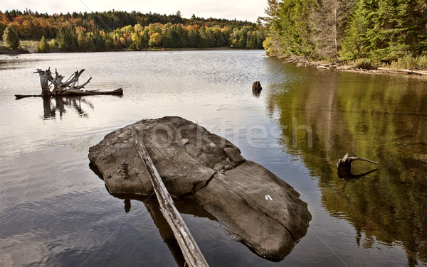 Algonquin Park Muskoka Ontario Stock photo © pictureguy