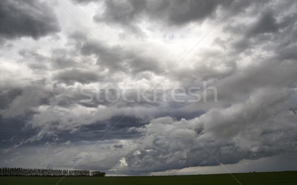 Onweerswolken saskatchewan prairie scène Canada boerderij Stockfoto © pictureguy