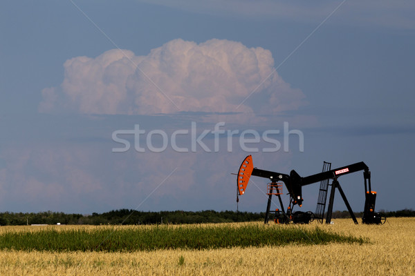 Oil and Gas Pump Jack Stock photo © pictureguy