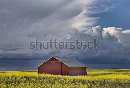 Stock fotó: Kő · templom · Saskatchewan · ház · szín · digitális