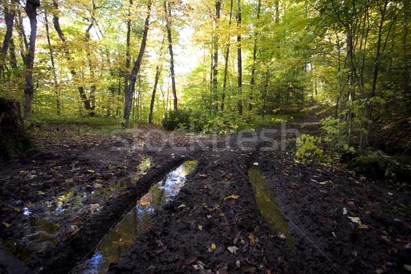 Plin de noroi rutier toamnă anvelopă textură murdărie Imagine de stoc © pictureguy