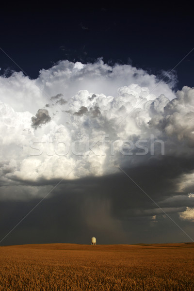 Nasty looking cumulonimbus cloud behind silo Stock photo © pictureguy