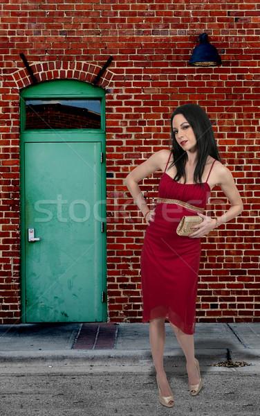 Schöne Frau schönen Kleid halten Kupplung Stock foto © piedmontphoto