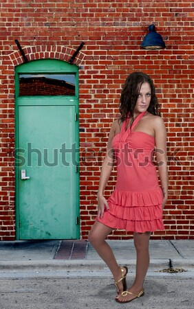 Beautiful Woman in a Mod Dress Stock photo © piedmontphoto