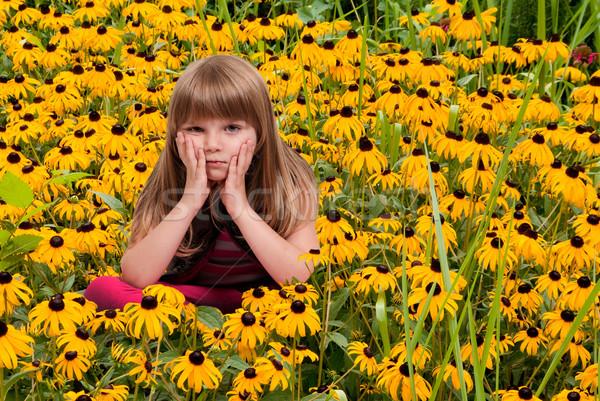 Foto stock: Nina · hermosa · nina · sesión · campo · nino