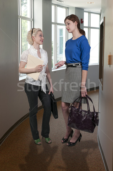 Iş kadın güzel birlikte proje kadın Stok fotoğraf © piedmontphoto