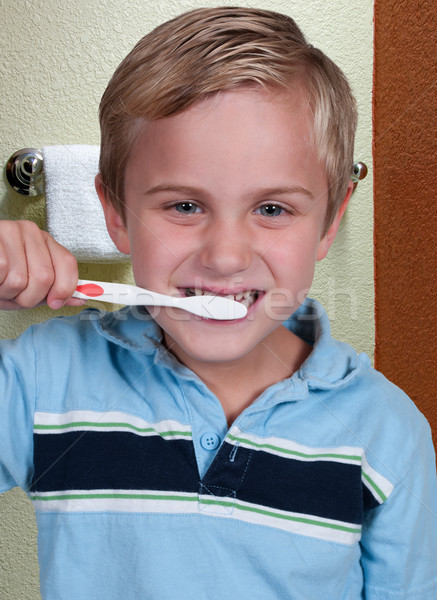 Little Boy Brushing Teeth Stock photo © piedmontphoto