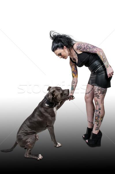 美人 牛 美しい 若い女性 犬 女性 ストックフォト © piedmontphoto