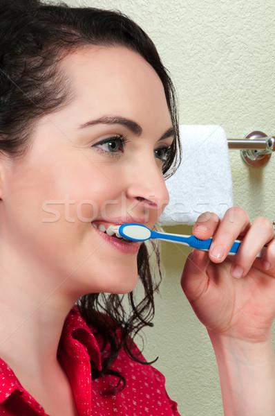 美人 良い 経口 歯の手入れ ストックフォト © piedmontphoto