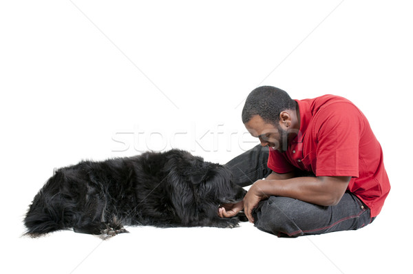Man Playing with Dog Stock photo © piedmontphoto