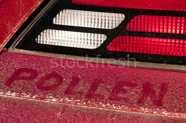 Yellow Pollen Stock photo © piedmontphoto