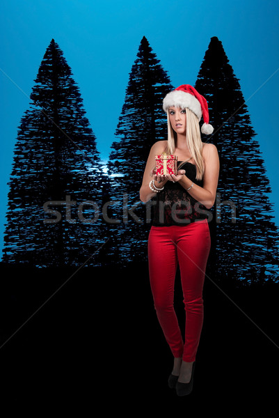 Bela mulher dom natal apresentar feliz Foto stock © piedmontphoto
