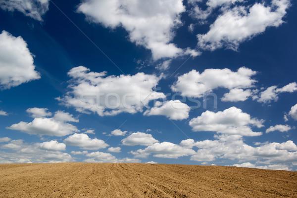 Campo cielo azul nubes tierra azul suelo Foto stock © Pietus