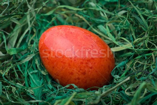 Stok fotoğraf: Easter · egg · kırmızı · yeşil · saman · seçici · odak · sığ