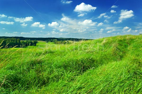 Landschap zomer groen gras top heuvel voorjaar Stockfoto © Pietus