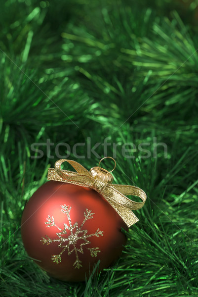 Christmas Rood groene bal Stockfoto © Pietus
