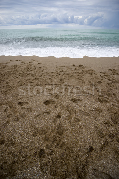 Footsteps. Stock photo © Pietus