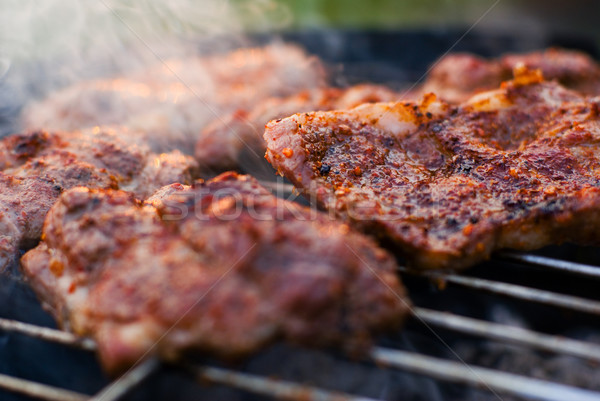 Roasted meat on the grill. Stock photo © Pietus