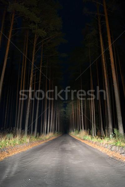 Weird road. Stock photo © Pietus