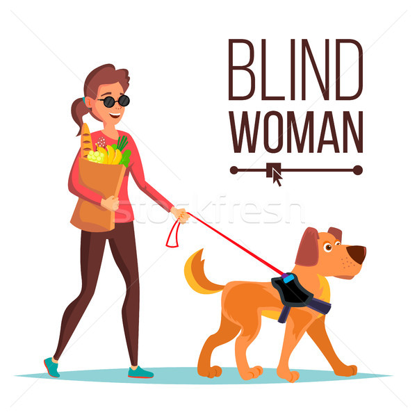 Blind Woman Vector. Person With Pet Dog Companion. Blind Female In Dark Glasses And Guide Dog Walkin Stock photo © pikepicture