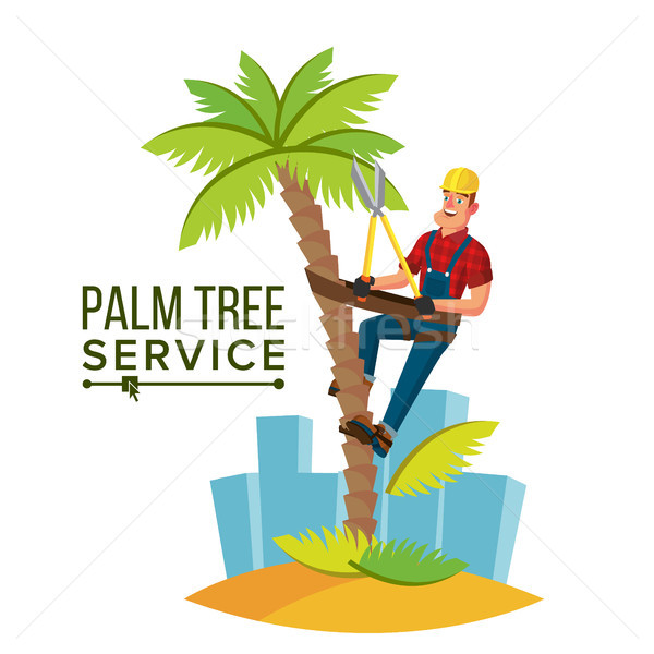 Palm Tree Trimming Vector. Trimming Tree Or Removal To Tree Pruning. Cartoon Character Illustration Stock photo © pikepicture