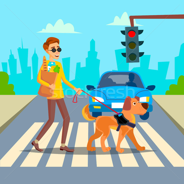 Blind Man Vector. Young Person With Pet Dog Helping Companion. Disability Socialization Concept. Bli Stock photo © pikepicture