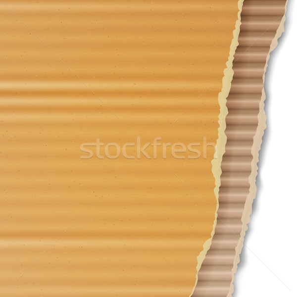 Corrugated Cardboard Vector Background. Realistic Ripped Carton Wallpaper With Torn Edges. Graphic D Stock photo © pikepicture