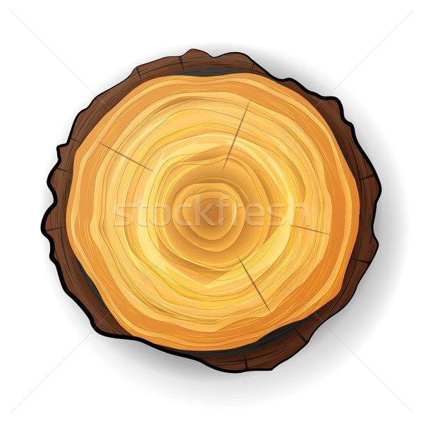 Cross Section Tree Wooden Stump Vector. Tree Round Cut With Annual Rings Stock photo © pikepicture