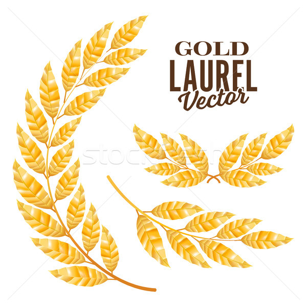 Gold Laurel Vector. Elements For Award Design Stock photo © pikepicture