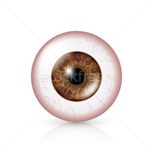 Conjunctivitis. Red Eye Stock photo © pikepicture