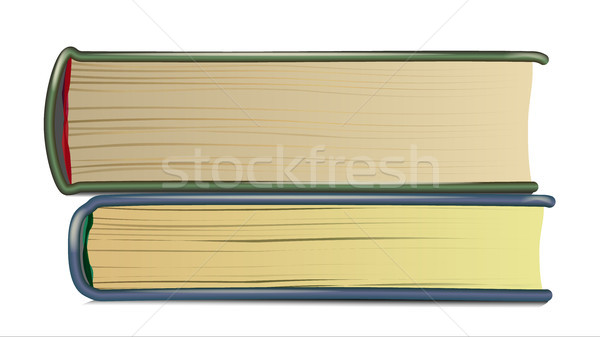 Boglya öreg könyvek vektor valósághű oldalak Stock fotó © pikepicture