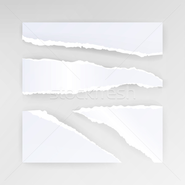 Torn Paper Blank Vector. Set Of Different Shapes Blank Paper Scraps Stock photo © pikepicture