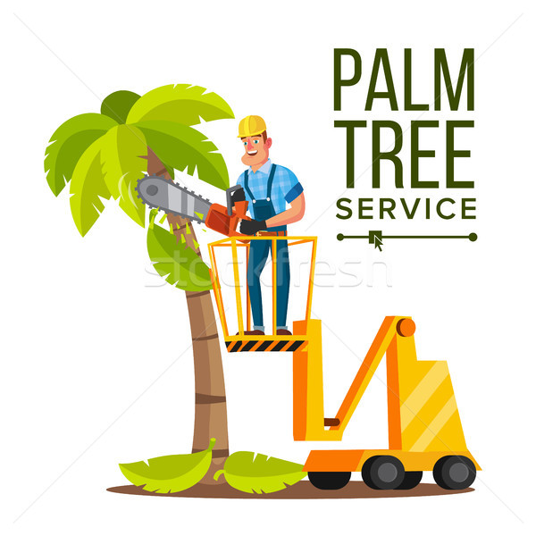 Palm Tree Care Vector. Trimming Tree Or Removal To Tree Pruning. Isolated On White Cartoon Character Stock photo © pikepicture