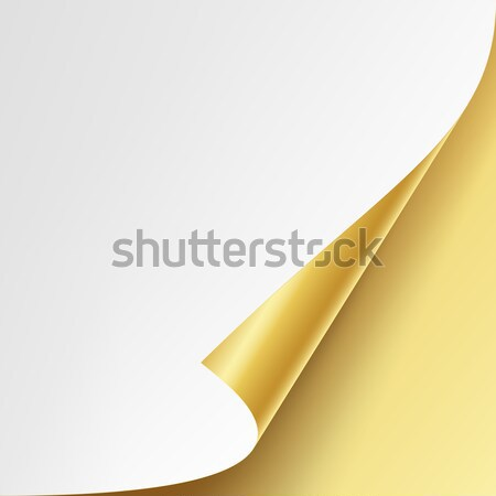 Curled Golden Metalic Corner Vector. White Paper with Shadow Mock up Close up Isolated Stock photo © pikepicture