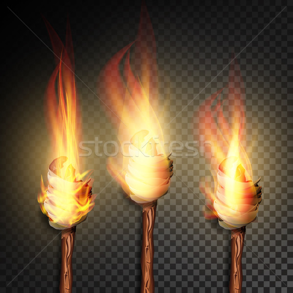 Torch With Flame. Burning In The Dark Transparent Background Realistic Torch With Flame. Vector Illu Stock photo © pikepicture
