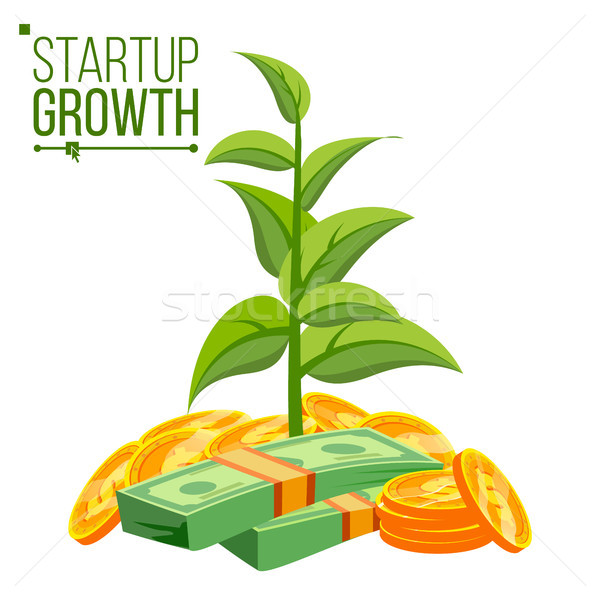 Startup groei vector plant groeiend spaargeld Stockfoto © pikepicture