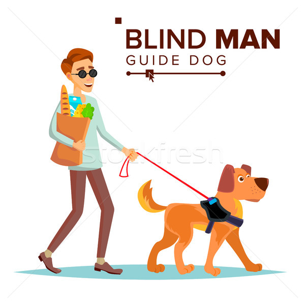 Blind Man Vector. Person With Pet Dog Companion. Blind Person In Dark Glasses And Guide Dog Walking. Stock photo © pikepicture