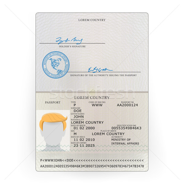 Internacional pasaporte vector muestra personal datos Foto stock © pikepicture