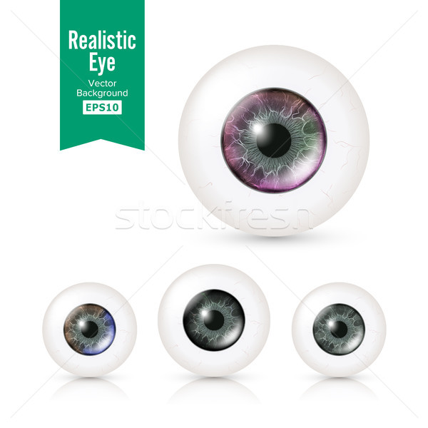 Human Eyeballs Set Stock photo © pikepicture