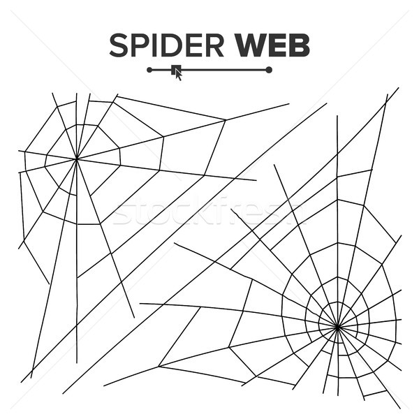 Halloween Spider Web Vector. Black Spider Web Isolated On White. For Halloween Design Stock photo © pikepicture