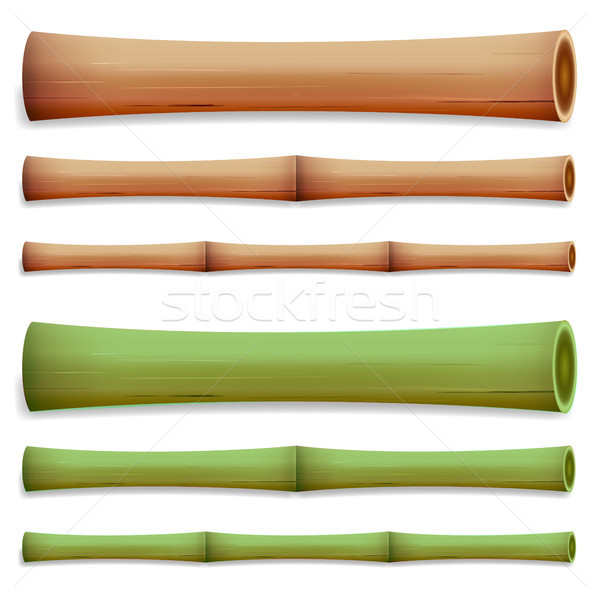 Bamboo Stems Isolated. Green And Brown Stock photo © pikepicture