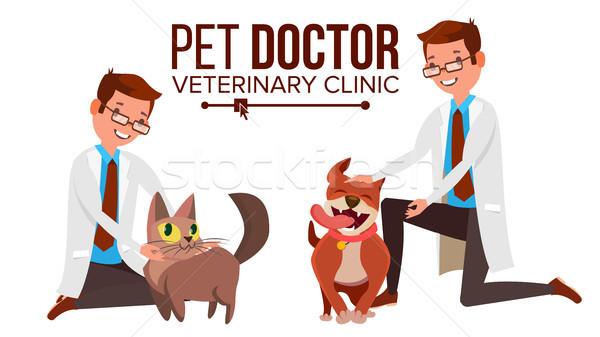 Photo stock: Vétérinaire · Homme · vecteur · chien · chat · clinique