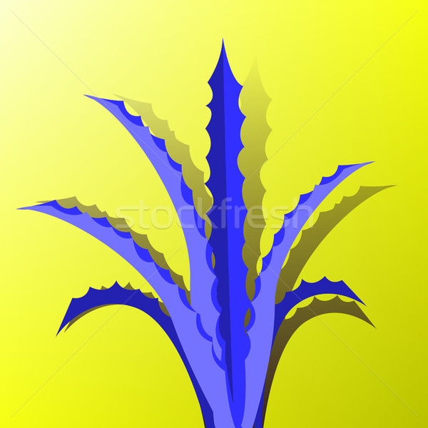 Minimal Surrealism Vector. Cactus Fashion Design. Creative Surreal. Illustration Stock photo © pikepicture